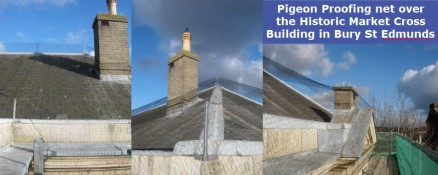 Pigeon Proofing